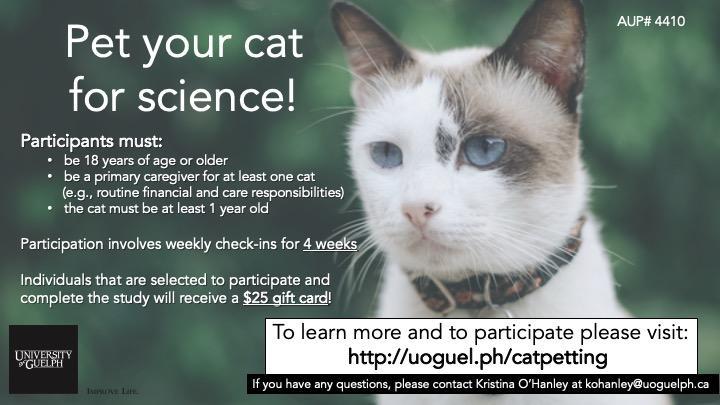 Cat petting study